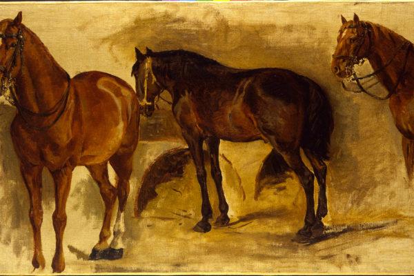 Studio di cavalli - Pietro Aldi