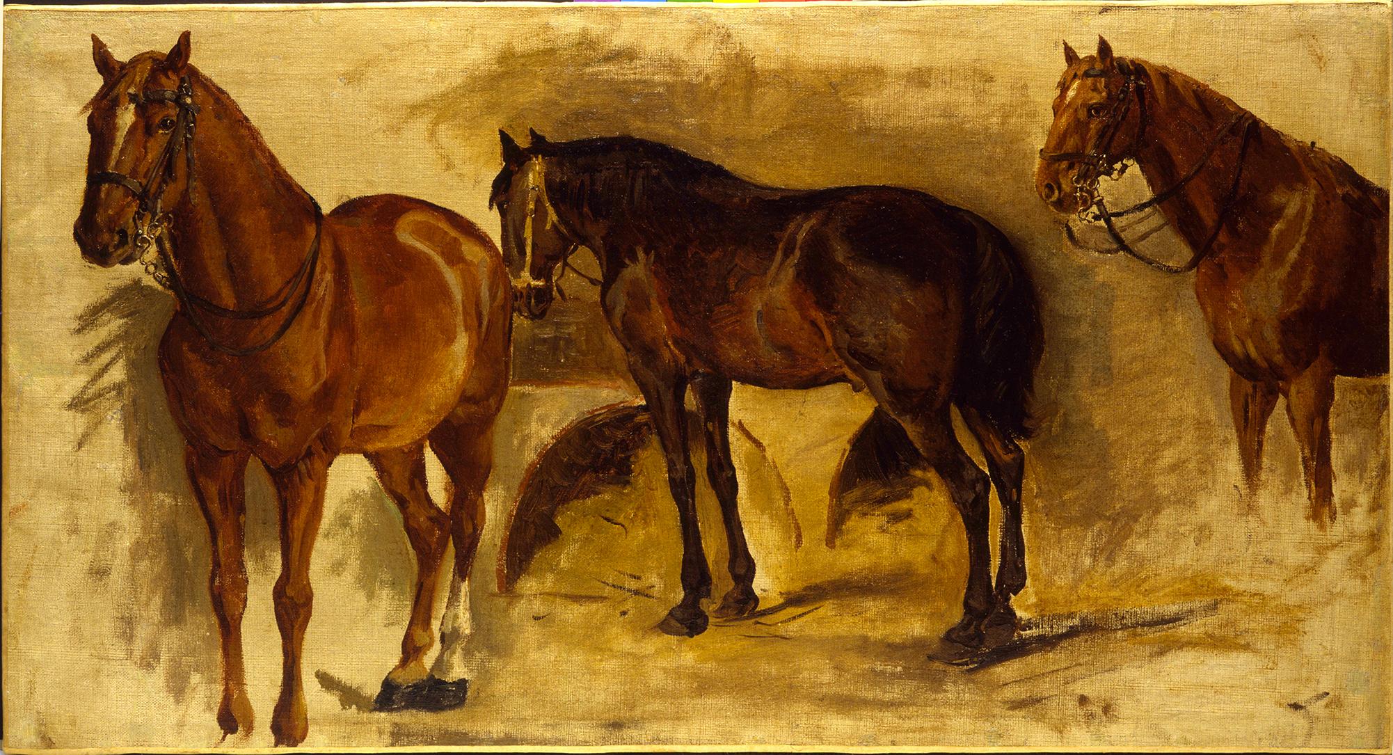 Studio di cavalli – Pietro Aldi
